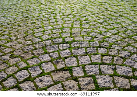 Cobblestone with grass bricks showing perspective to a new beginning.