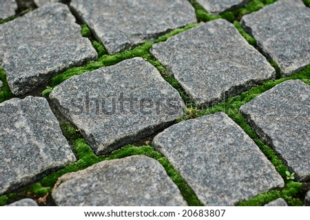 cobblestone with moss