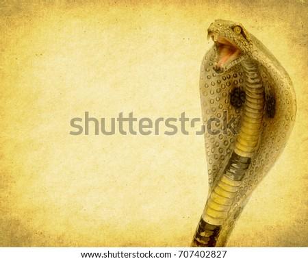 cobra on art grunge vintage texture background