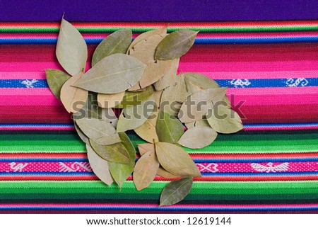 Coca Leaves on colorful tapestry