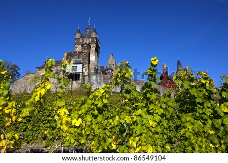 Cochem Castle in Germany behind wine grapes.
