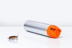 cockroach and insect next to a poison spray bottle, white background. Toxins, insecticides, pesticides, pest control at home