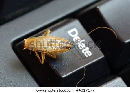 cockroach delete idea