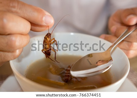 Cockroach in hand take up from soup,Contaminant bacteria food risk of food poisoning  #766374451