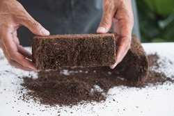 Coco peat for gardening. Coco peat is growing medium made out of coconut husk.