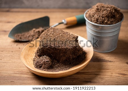 Coco peat for gardening. Coco peat is growing medium made out of coconut husk. Stock photo ©