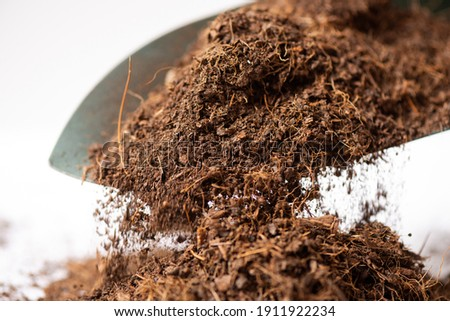 Coco peat for gardening. Coco peat is growing medium made out of coconut husk. Foto stock ©