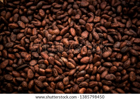 Cocoa beans and cocoa fruit on the cocoa concept with raw materials Aromatic cocoa beans as background #1385798450