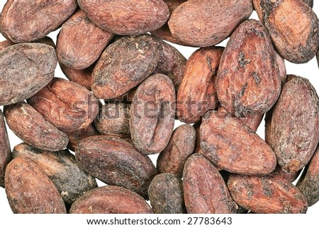 Cocoa beans close-up on white background
