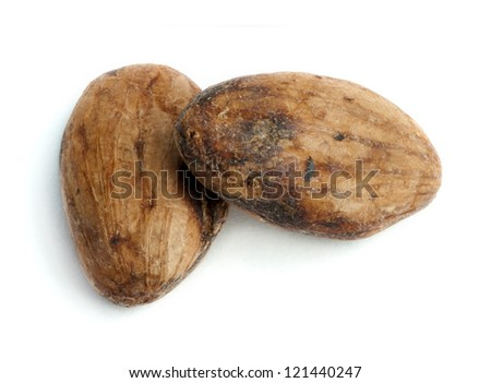 Cocoa beans close up. White isolated