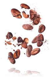 Cocoa beans flying in the air. Cracked cocoa beans levitate on white background. High resolution image. Levitation concept.