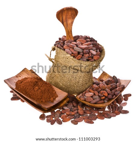 cocoa beans in bag of linen, cocoa powder on wooden stand with wooden spoon isolated on white background