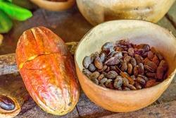 Cocoa Beans in Grenada, Caribbean