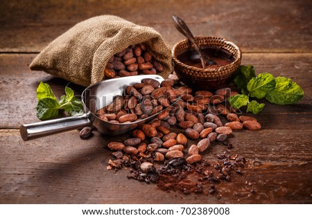 Cocoa concept with raw, peeled, and crushed Theobroma cacao cocoa beans #702389008