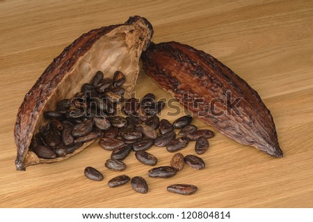 Cocoa fruit with beans  on a wooden table