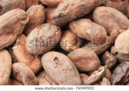 cocoa or cacao beans macro image