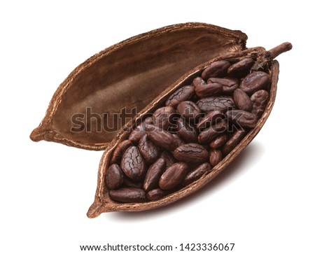 Cocoa pod filled with fried beans isolated on white background. Package design element with clipping path