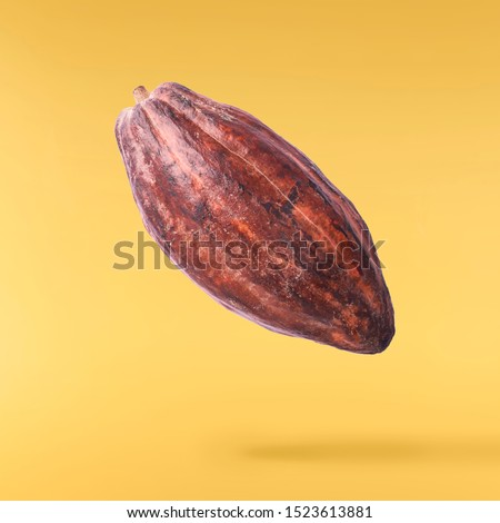 Cocoa pod flying in the air. Cocoa pod levitate on yellow background. High resolution image. Levitation concept.
