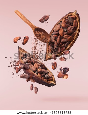 Cocoa pod flying in the air. Cracked cocoa pod and beans and wooden spoon with cocoa powder levitate on pink background. High resolution image. Levitation concept.