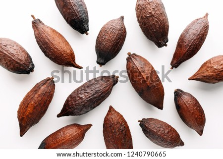 Cocoa pods on a white background, creative flat lay food concept #1240790665
