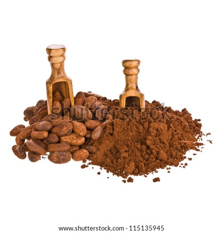 cocoa powder and cocoa beans with wooden scoop isolated on white background