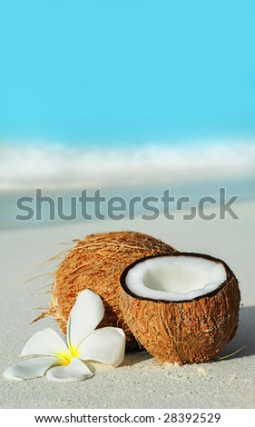 coconut and plumeria flower on the sand on the beach