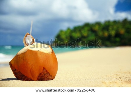 Coconut cocktail on beach on caribbean beach, Dominican Republic