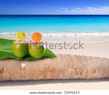 coconut cocktails on palm tree trunk in turquoise Caribbean beach [Photo Illustration]