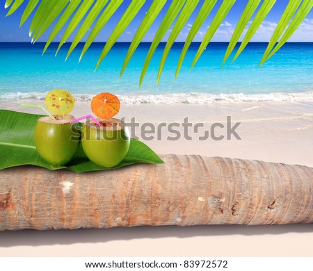 coconut cocktails over palm tree trunk in turquoise sea of Caribbean white sand beach [ photo-illustration ]