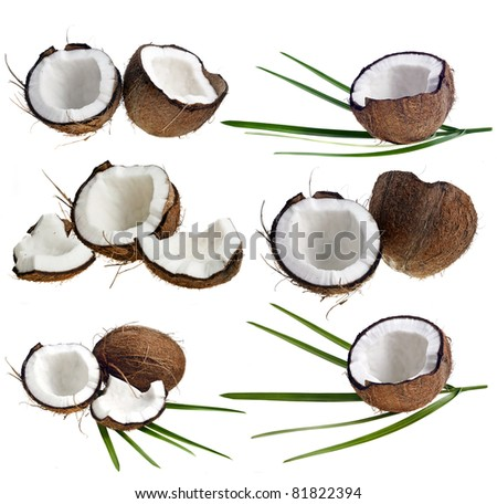 Coconut collection isolated on a white background