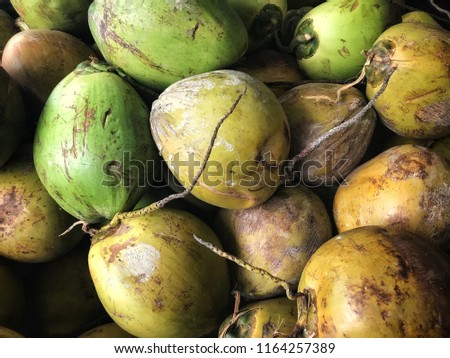 Coconut harvest. Many coconuts. Coconut for food textures. A backdrop of coconut. Street vegetable market. Group of coconuts.