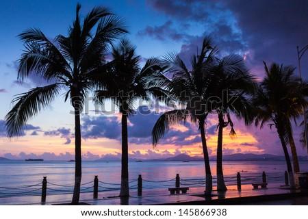 Coconut Horizon Fiery Backdrop