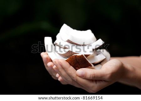 Coconut in hands. SPA Collection.