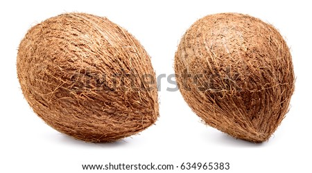 Coconut isolated on white background. Collection. Full depth of field.