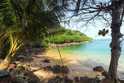 Coconut Jungle Beach on tropical coast indian ocean, Unawatuna, island Sri Lanka