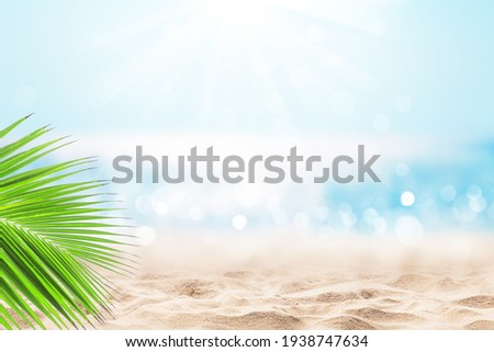 Coconut palm leaf against blue sky and beautiful beach in Punta Cana, Dominican Republic. Vacation holidays background wallpaper. Landscape of tropical summer beach.