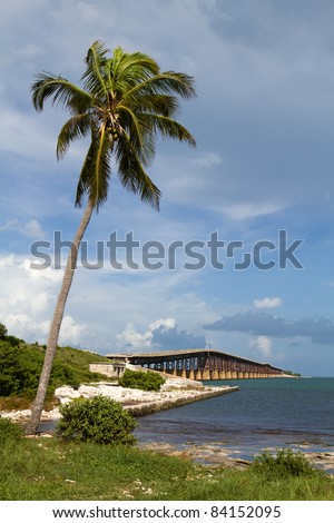 Coconut palm tree leans out over the water at Bahia Honda Key in the Florida Keys with an old bridge in the background.