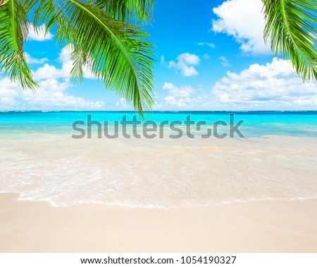 Coconut palm trees against blue sky and beautiful beach in Punta Cana, Dominican Republic. Vacation holidays background wallpaper. View of nice tropical beach. #1054190327