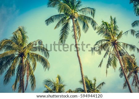 Coconut palm trees at sunny day at blue sky with clouds. Sea sunset nature background. Travel concept. Photo from Railay Beach, Krabi, Thailand. Vintage filter and boost up color processing.