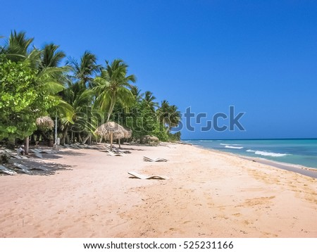 Shutterstock Coconut palms on popular Canto de la Playa in Saona Island, Parque Nacional del Este, East National Park, Dominican Republic. Paradise beach in tropical island with white sand and sunny sky.