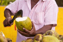 Coconut Seller. Close up of man cutting a coconut with a big Indian knife. Sale of coconuts. Indian street market.  - Image
