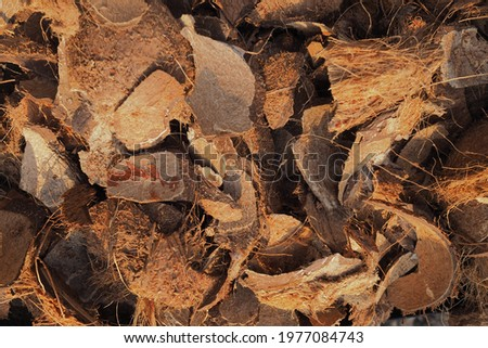 coconut shells and coir to be used as fuel for barbecue. background texture Photo stock ©