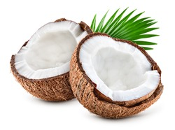 Coconut slice. Coco pieces isolated on white. Coconut with leaves. Full depth of field.
