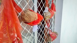 coconut tied with red hindu holy flag in a temple showing India culture of devotion