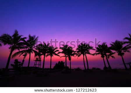 Coconut tree silhouette on paradise sunset, twilight on the beach. - stock photo