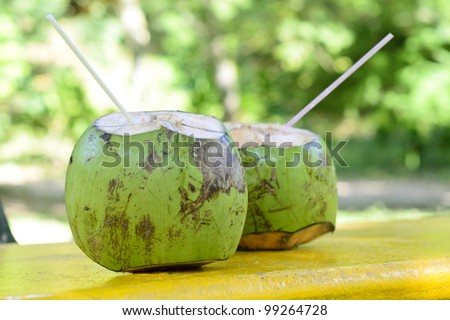 Coconut - Tropical green coconuts opened for the drinking water with straws.