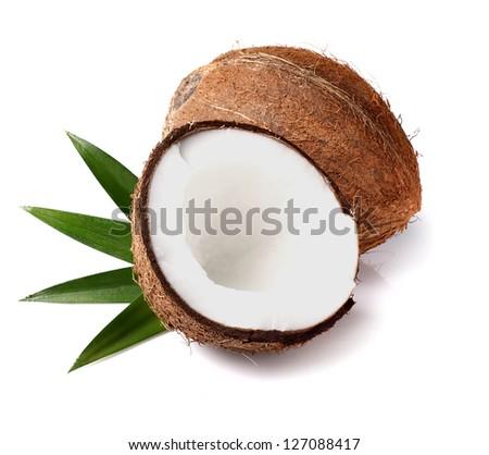 Coconut Cocos