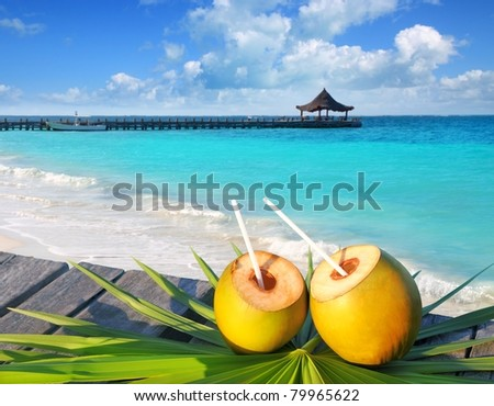 coconuts cocktail on palm tree leaf in Caribbean tropical sea [Photo Illustration]