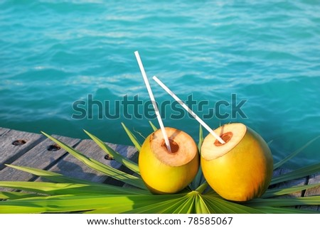 coconuts cocktail palm tree leaf in Caribbean tropical sea [Photo Illustration]