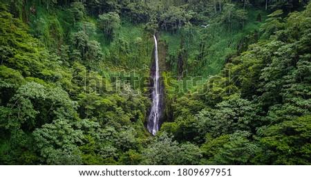 Cocos Island Marine Park Costa Rica Foto stock ©